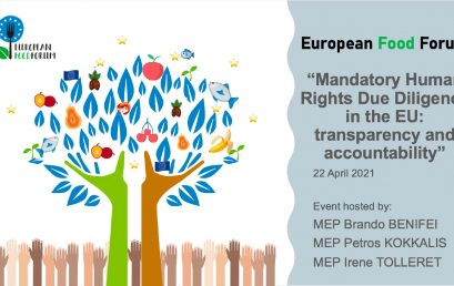 13. Mandatory Human Rights Due Diligence in the EU: transparency and accountability